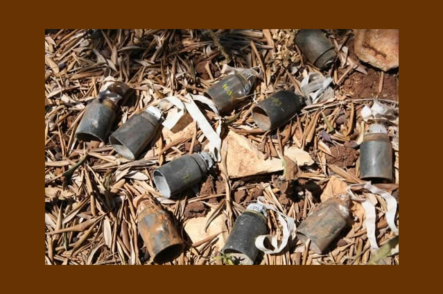 地雷廃絶日本キャンペーン