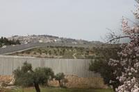 パレスチナ