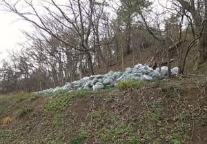 小池さんの敷地の「除染」で集められた落ち葉など