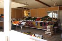 色とりどりの野菜が並ぶお店@シャンゼリゼ