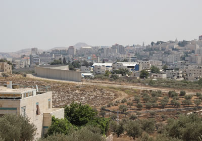 入植地から西岸地区をみる。手前にあるのはパレスチナ人の家。壁が分断してしまった。オリーブ畑も分断されている。
