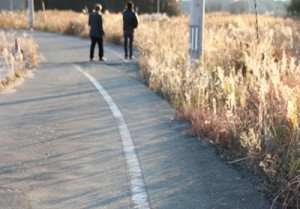 浪江町。2011年3月11日の大地震により、道路がずれた様子がよくわかる。