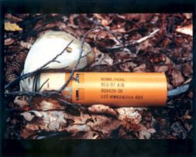 柔らかい地面の上に落ちると、爆発せずに不発弾になってしまう確率が高い。 写真は米国製の空中投下型クラスター爆弾の子爆弾(BLU-97)撮影:JOHN RODSTEAD