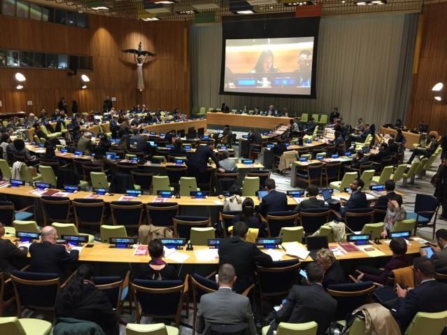 各国代表に向けて、韓国のNGO「参与連帯(PSPD)」の代表者が発言している。2019年5月1日、ニューヨーク国連本部信託統治理事会会議場。