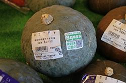 販売する野菜には、全て検査済みシールを貼りました。